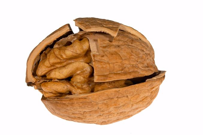Расколотый грецкий орех