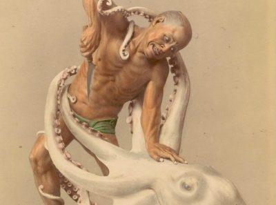Борется с осьминогом